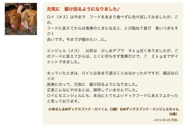 kuchikomi2